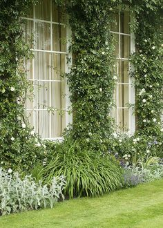 Windows, West Woodhay House, Hampshire, UK