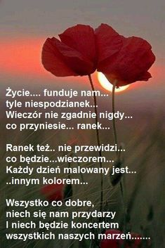 życzenia ogolnie romantycznie love Good Night All, Soul Healing, Thank You Letter, Morning Quotes, Motto, Good To Know, Wise Words, Quotations, Texts