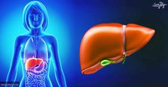 7 Signs Your Liver Needs To Detox