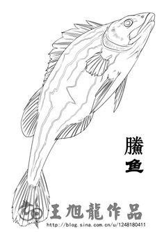 《山海经》描述:鰧鱼,状如鳜,居逵,苍文赤尾,食者不痈,可以为瘘。 逵 ,洞穴的意思,住在水中洞穴里的鱼。
