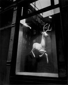designer's window on bleeker street, new york city, late november, 1948