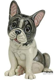 Pets With Personality - NAPOLEON THE FRENCH BULLDOG