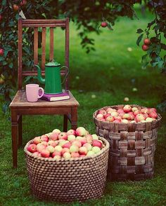 #allthebeautifulthings #autumn #apple #appletime #coffeepot #countryside #countryliving