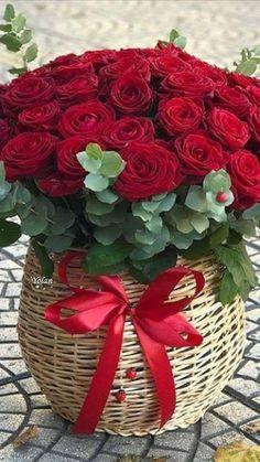 Flower Box Gift, Flower Boxes, Rose Arrangements, Beautiful Flower Arrangements, Beautiful Rose Flowers, Exotic Flowers, Flower Phone Wallpaper, Flower Wallpaper, Good Morning Beautiful Pictures