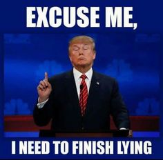Image result for trump idiot liar