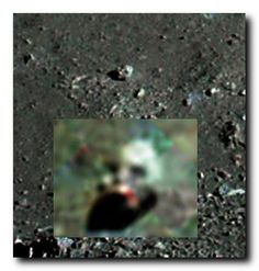From NASA astronauts photo on moon of a crash site. Aliens On The Moon, Aliens And Ufos, Ancient Aliens, Ancient History, Science Of The Mind, Alien Photos, Apollo 11 Moon Landing, Strange Beasts, Moon Surface