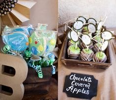 Owl and Bird Cookies & Chocolate Covered Apples