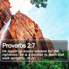 Proverbs 2:7 He layeth up sound wisdom for the righteous: he is a buckler to them that walk uprightly. (KJV)  #Peace #Jesus #Church #FamousQuotes #PhotoOfTheDay http://www.bible-sms.com/