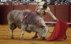 ENTREVISTA Morante ratifica ausencia de Sevilla  'Un honor compartir cartel con Joselito'