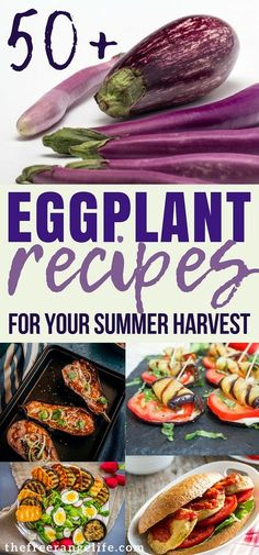 50 Delicious Eggplant Recipes for the Whole Family - Eggplant Recipe! More than 50 delicious recipes to choose from including baked eggplant recipes, grilled eggplant recipes, sauteed eggplant recipes, and more! Japanese Eggplant Recipes, Grilled Eggplant Recipes, Vegan Eggplant Recipes, Eggplant Dishes, Eggplant Parmesan, Vegetarian Recipes, Healthy Recipes, Eggplant Eggs Recipe, Veggies