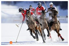 The ice covering Lake St. Moritz is too thin. Polo Match, Sport Of Kings, Sport 2, Karting, World Cup, Switzerland, Old School, Camel, Saints