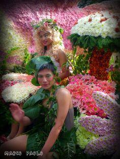 flower festival, baguio city