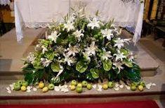 Imagen relacionada Plants, Aisle Decorations, Hydrangeas, Floral Arrangements, Plant, Planets