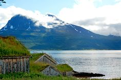 The further 'out of the way' you go the more common it is to see folk cottages standing by the side of roads, along fjords or in a thicket of trees, minding their own business.  Many where built in the 1800s and exemplify the life of rural Norway.