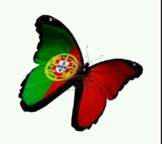 Portuguese pride.MY PORTUGUESE FLAG AND MY BEAUTIFUL BUTTERFLYS.