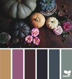 Design Seeds + Color Atlas by Archroma® Fall Color Palette, Colour Pallette, Colour Schemes, Color Combos, Color Patterns, Design Seeds, Color Balance, Balance Design, Colour Board