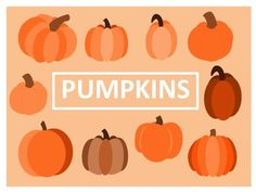 Pumpkins Clip Art20 PNG images (300 dpi)10 color and 10 black lineImages included: 10 different pumpkinsThese images are for personal, educational and commercial use.  If used to make printable materials please link to TPT store and include logo (provided in download).
