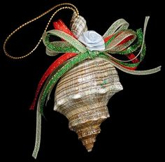 sea shells crafts ideas | Seashell Craft Ideas / Conch Ornament