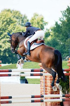 Awesome to feel the energy of a horse underneath you, lift you up and fly