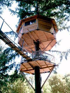 Majestree Treehouse