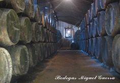 Bodega Miguel Guerra / Miguel Guerra winery. #winery #vino #cadiz #barrel