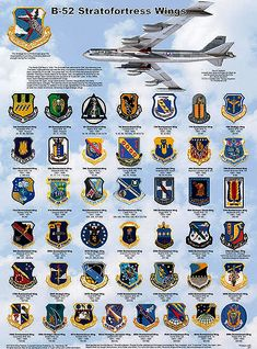 Shows all unit patches. Military Ranks, Military Units, Military Insignia, Military History, Military Aircraft, Military Signs, Army Ranks, Military Uniforms, B52 Bomber