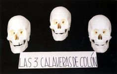 Nicanor Parra Art Gallery, Skull, Google, Quotes, Libros, Quotations, Art Museum, Fine Art Gallery, Qoutes