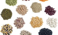 Seed types (and what each of them mean)