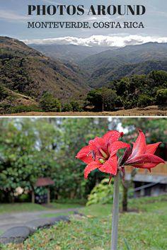 Photos from around Monteverde, Costa Rica