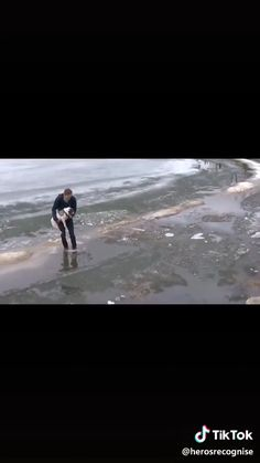 Massive respect to this guy for throwing himself into freezing water to save a drowning dog - school outfits Stories That Will Make You Cry, Sad Love Stories, Happy Stories, Sweet Stories, Cute Stories, Funny Animal Videos, Cute Funny Animals, Animal Memes, Cute Baby Animals