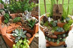 déco de jardin en pots en terre cuite et plantes succulentes