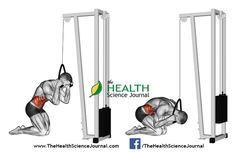 © Sasham   Dreamstime.com - Exercising for bodybuilding. Curling body via block simulator
