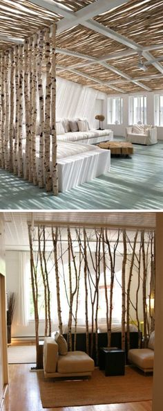 Real Tree Branches As a Room Divider