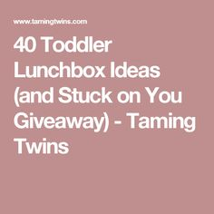 40 Toddler Lunchbox Ideas (and Stuck on You Giveaway) - Taming Twins