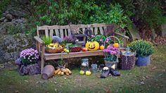 Ingyenes kép a Pixabay-en - Aratás, Szüreti Fesztivál, Hálaadás