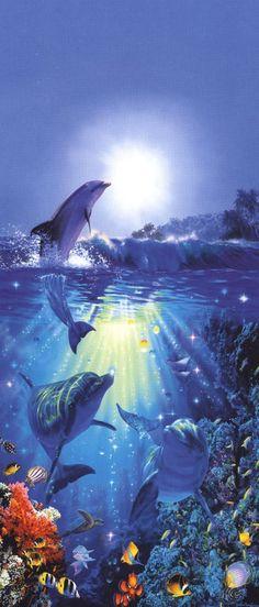 Hawaiian Artists Hawaii Dolphins Dolphin Art