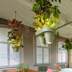 Lámpara de techo con macetas colgantes de aluminio pintado.