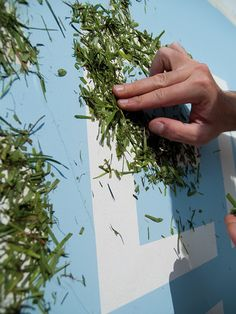 """Graffiti made with grass for the urban art festival: NON TOXIC.The phrase """"Semilla pero no se toca"""" talks about the idea of preserving what we have and is not ours: the nature, the plants, the planet. Statement about the preservation of the nature."""