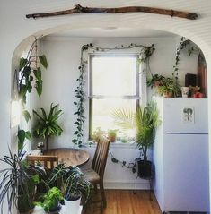 living with plants — thesill: Brb  dreaming of a plant-filled sunroom…...