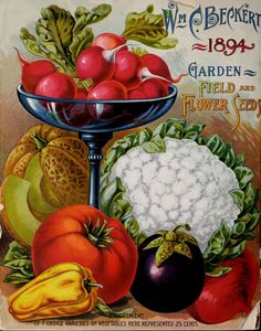 Back cover of  Wm. C. Beckert's Catalogue of Vegetable, Flower and Field Seed (1894) with illustrations of '7 Choice Vegetables.'