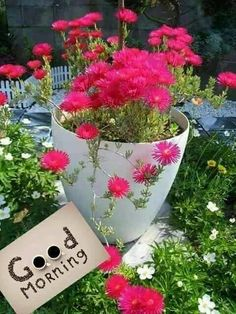Good Morning Beautiful Flowers, Good Morning Nature, Good Morning Roses, Good Morning Cards, Good Morning Photos, Good Morning Gif, Good Morning Greetings, Morning Pictures, Happy Morning