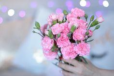 Marzec w Zdjęciach - Tulipany...tulipany | Ela Lis Make-Up