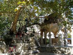 tree of hipocrates kos town, where hipocrates is said to have taught under ! i enjoyed many an iced frappe under it !