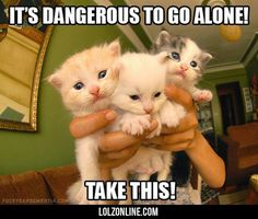 It's Dangerous To Go Alone #lol #haha #funny