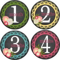 Monthly Bodysuit Baby Growth Stickers - Flowers & Lace - Milestones, Photo, Girl - Feminine and Modern