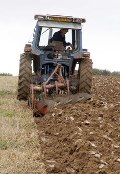 Hedging & Ploughing - Melplash Agricultural Society, Melplash, Bridport, West Bay