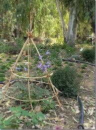 bordo per aiuola   zzzz giardino idee   pinterest - Piccolo Giardino Davanti Casa
