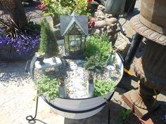 Miniature garden ideas - fun for little girls and big little girls ;)