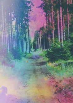 Free party fôret forest psychedelic art