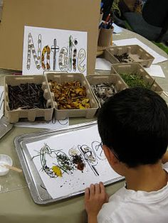 Reggio - natural materials names - Preschool ELA.7.64 Generalize a solution to a new situation. ELA.7.63 Use trial and error to solve a simple problem.